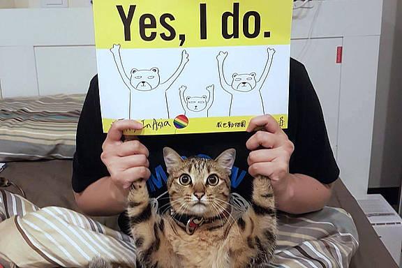 """Unterstützer_innen der Kampagne """"First in Asia"""" zur Einführung der gleichgeschlechtlichen Ehe in Taiwan"""