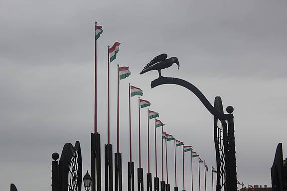 Ungarische Nationalflaggen auf dem Burgberg von Budapest